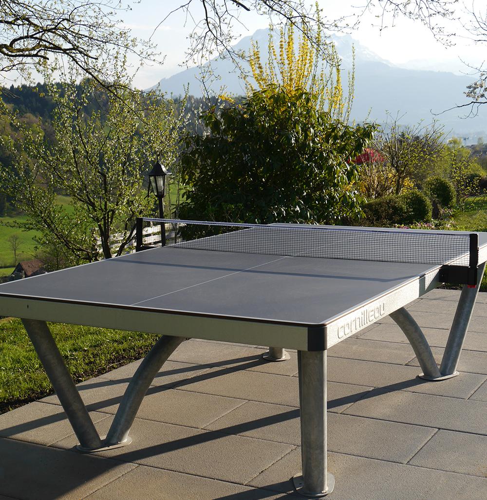 Der Park Tischtennistisch auf privatem Grundstück (Adligenswil)